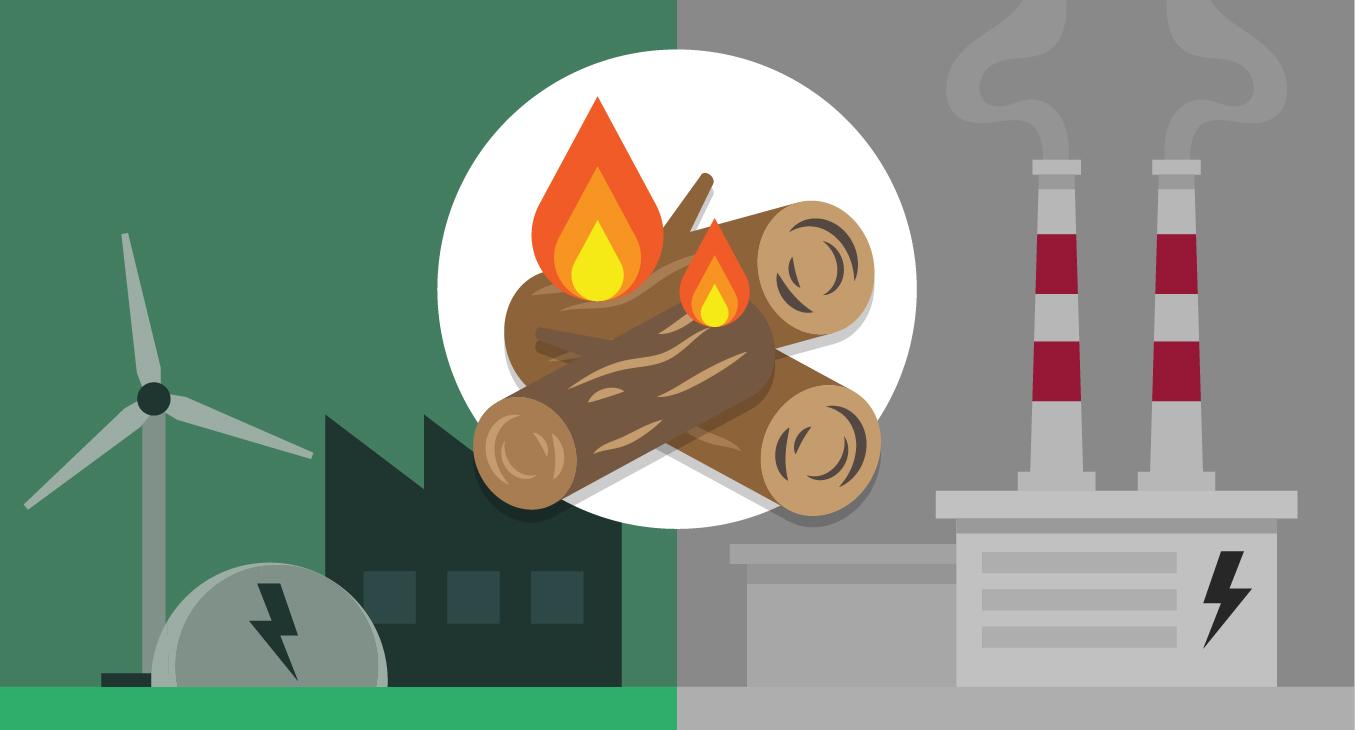 Biomassa: groene of grijze energie?